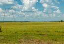 ФСК ЕЭС повышает экологическую безопасность производственных объектов