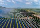 Индийский штат Карнатака стал мировым лидером по производству возобновляемой энергии