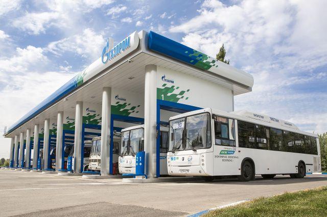 Анастасия Бондаренко: «Государство как потребитель транспортных услуг должно подавать пример перехода на природный газ»