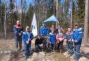 Работники Владимирэнерго принимают активное участие в региональных экологических мероприятиях