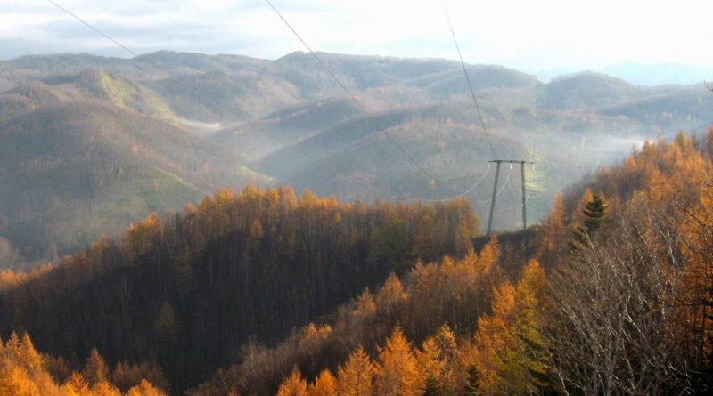 Сахалинэнерго реконструирует системообразующую линию электропередачи на Сахалине
