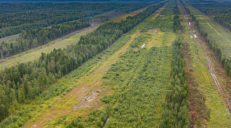АО «Транснефть – Сибирь» завершило работы по укладке дюкера на подводном переходе нефтепровода Красноленинская – Шаим – Конда