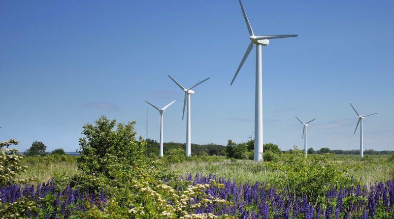 Подготовка к строительству трех ветропарков мощностью 300 МВт начата в Ростовской области