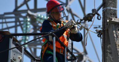 «Россети Центр и Приволжье Рязаньэнерго» обеспечил электросетевой инфраструктурой животноводческий комплекс