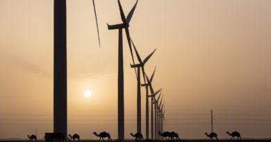 В Кении запустили крупнейшую в Африке ветряную электростанцию