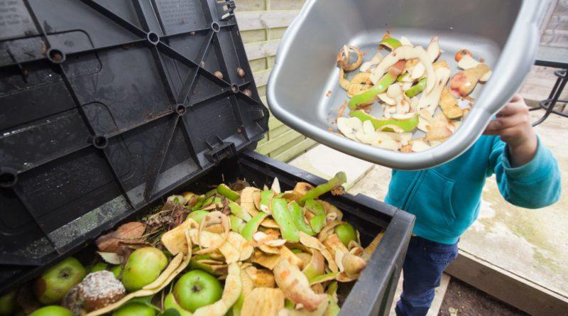 Пищевые отходы как возобновляемая энергия