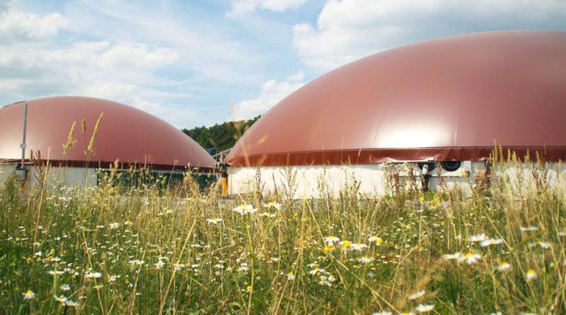 Растёт международный интерес к биогазовой установке Olympus в Румынии