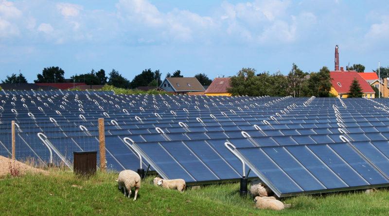 Шесть причин использовать энергию от солнца на фермах